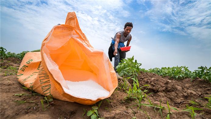 """中国化肥厂的""""死亡倒闭潮"""":90%产能过剩!""""减肥""""却让他们回天乏术"""